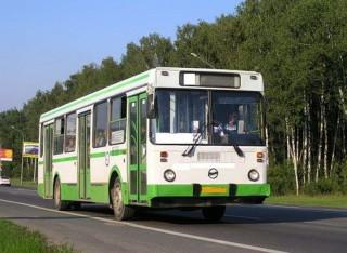 Вводится дополнительный автобусный маршрут